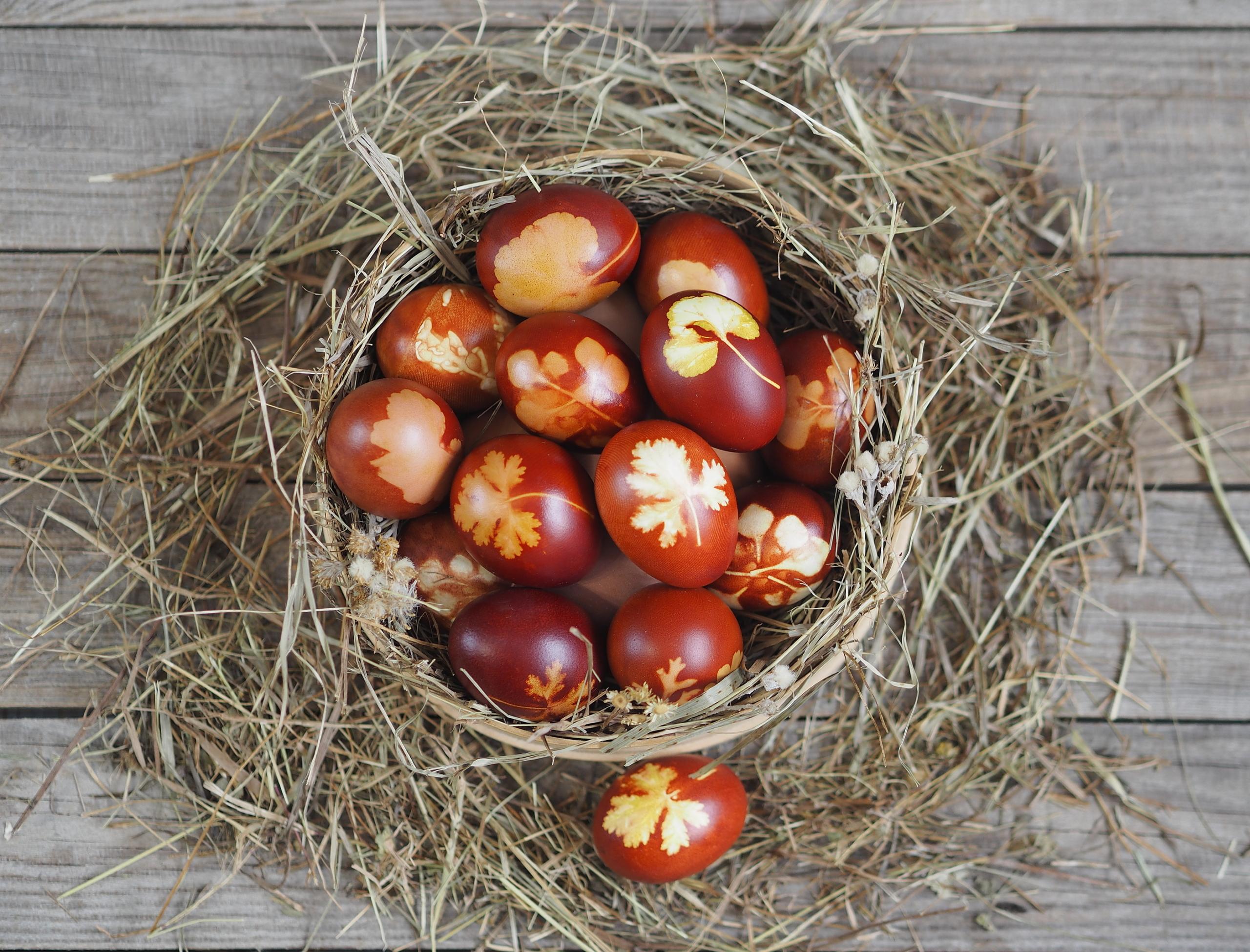 Las manualidades de Rosaleda Kids Club: decoración de huevos con hojas